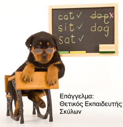 Θετικός εκπαιδευτής σκύλων