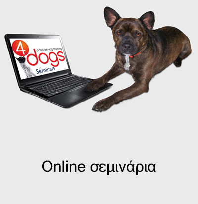 online seminars